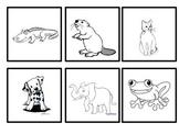 Alphabet Matching Cards - beginning sounds