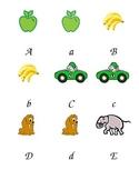 Alphabet Matching/Memory