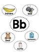 Alphabet Mini-Anchor Chart Bundle - With Labels - Color