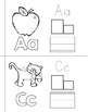 Alphabet Mini-Books - Letter Practice for Pre-K & K
