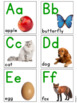 Alphabet Pack for Kindergarten and Special Education