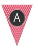 Alphabet Pennants-Raspberry Moroccan