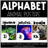 Alphabet Posters - Real Photos!