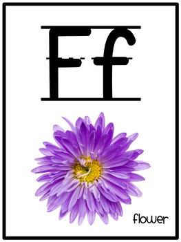 Alphabet Photograph Posters