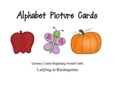 Alphabet Picture Cards Literacy Center