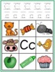 Alphabet Picture Hunt - Beginning Letter/Sounds Activities(In Color)