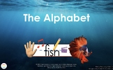 The Alphabet Picture Review Presentations