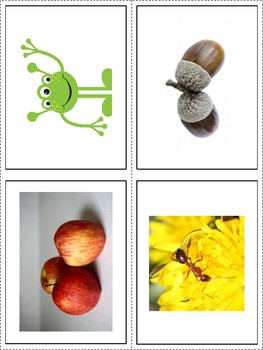 Alphabet Picture Sorting Cards