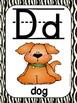 Alphabet Poster Set: A-Z (Full & Half Size Posters) {Jungle Animal Theme}