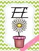 Alphabet Posters Chevron {D'Nealian Lined Edition}