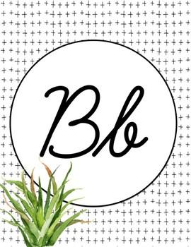 Alphabet Posters - Cursive - Succulents - Cactus - Decor