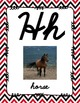 Alphabet Posters Cursive-Unlined (Red and Black Chevron)
