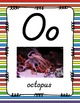 Alphabet Posters D'Nealian (Unlined with Stripes)