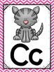 Alphabet Posters {Pink Chevron} {Many Picture Options} {Full Page Posters}