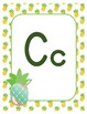 #roomdecor Alphabet Posters - Pineapples - Primary Manuscript