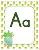 Classroom Decor Alphabet Posters - Pineapples - Primary Manuscript