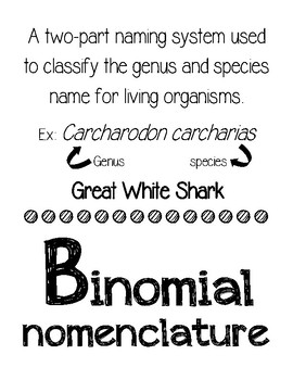 Alphabet Posters - Science Edition