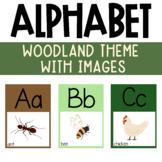 Alphabet Posters Woodland Forest Animal Classroom Theme Decor