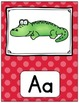Alphabet Posters & Word Wall Cards (Bright Polka Dots)