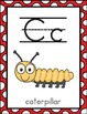 Alphabet Posters and Flashcards