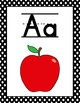 Alphabet Posters with Flash Cards & Charts---Black and White Polka Dots