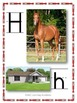 Alphabet Posters/Flash Cards