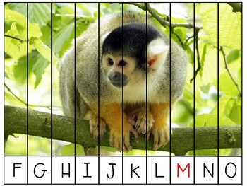 Alphabet Puzzles (Letter Recognition and Order)