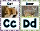 Zoo Phonics REAL Alphabet Pictures Wall Cards