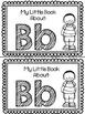Alphabet Sight Word Readers