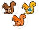 Alphabet Squirrels - Matching Upper Case, Lower Case and Beginning Sounds