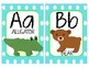 Alphabet Wall Cards - Blue and Lime Green
