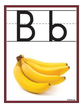 Alphabet Wall Charts - 26 Zaner-Bloser Manuscript Posters- High Quality Graphics