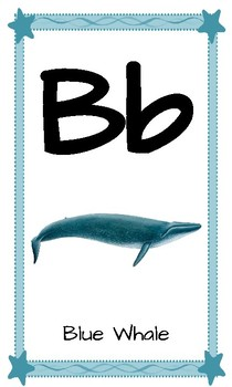 Alphabet Wall - Ocean Themed