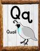 Alphabet Wall Posters: Animals/Whitewash Set