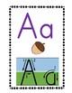 Alphabet Wall Display Cards