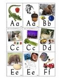 Alphabet and Basic Phonics Flash Cards w/ Box