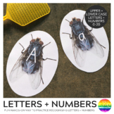 Alphabet and Number Fly Swat Cards
