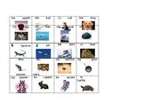 Alphabet flash Cards & one sheet