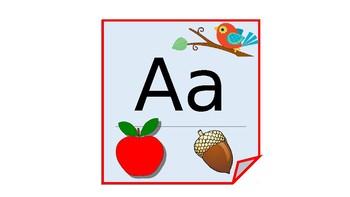 Alphabet  for the classroom