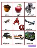Alphabet, Reggio, Inclusive, Healthy Choices, Environmental aware