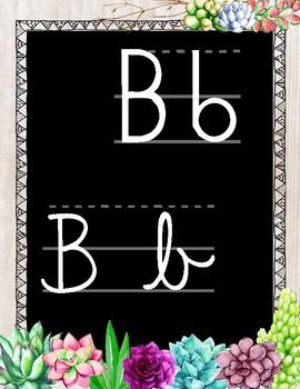 Alphabet succulentes