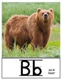 Alphabet with Real Pictures (Expeditionary Learning; EL Skills Block key words)
