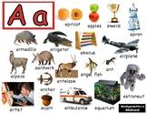 Alphabet, Reggio Images, Inclusive, Environmental Awareness