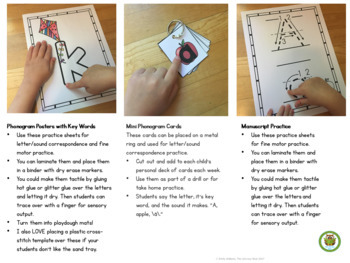 Alphabetic Principle Activity Pack Orton-Gillingham Based Reading Intervention