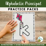 Orton-Gillingham Activities: Alphabetic Principle for Multisensory Reading