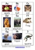 Alphabetical Letter Mini Flash Cards