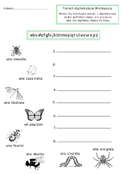 Minibeasts & Insects  - French
