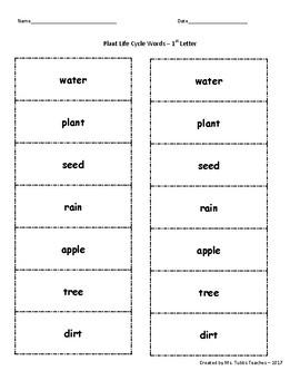 Alphabetical Order - Cut, Glue, Draw
