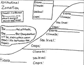 Altitudinal Zonation Notes/Graphic Organizer