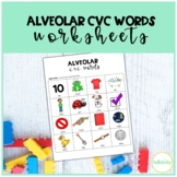 Alveolar CVC Words Worksheet